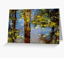 Everglades Reflection Greeting Card