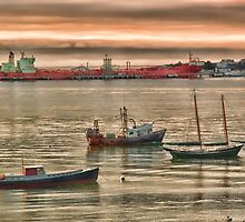 Harbor Morning by Richard Bean
