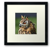 Wise one....... Framed Print