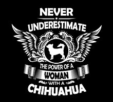 A Woman With A Chihuahua by bestdesignsever