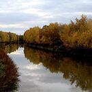 Autumn Evening by Leann  Rardin