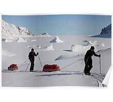 Nordic skiing in Liverpool land Poster