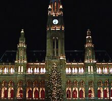 Vienna City Hall at Christmas by pda1986