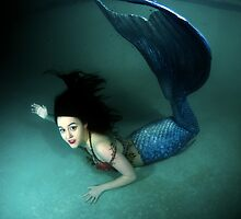 Mermaid by Greg Amptman