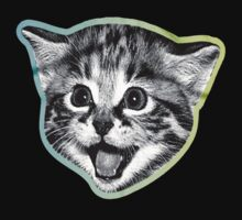 Crazy Cat by designCENTRAL