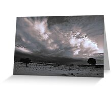 Storm Tail (duotone) Greeting Card