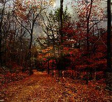 Seasonal Autumn Road by PineSinger