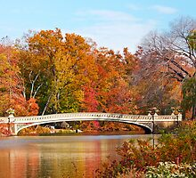Central Park Bow Bridge by Ryan Mingin