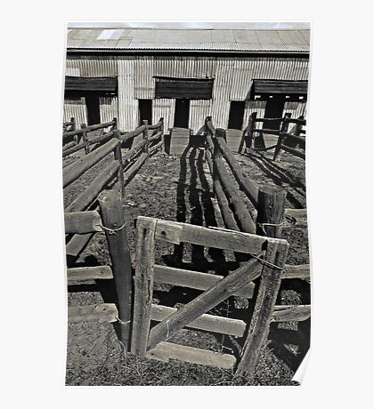 Old Shearing Shed (duotone) Poster