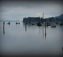 """Peaceful Waters"" - Ganges Harbour, Salt Spring Island by Dawn144"