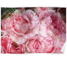 Vintage Rose Letters Poster