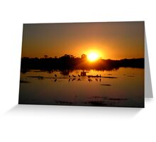 Florida Sunset Greeting Card