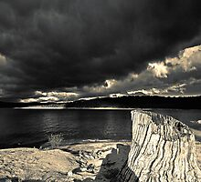Stormy Lake  (duotone) by graphicscapes