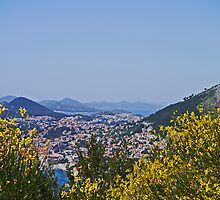 Overlooking Dubrovnik, Croatia. by Margaret  Hyde