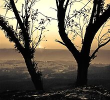 Blue Mountains Sunset  (duotone) by graphicscapes