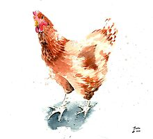 Watercolour of a Ginger Chicken by Pachionart