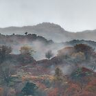 Autumnal colors near Grasmere in the English Lake District by Peter Talbot