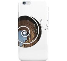 migration iPhone Case/Skin