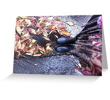Rainy Day Gumboots ~ Greeting Card