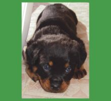 Cute Rottweiler Puppy With Head On Paws Kids Clothes