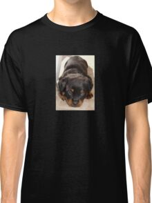 Cute Rottweiler Puppy With Head On Paws Classic T-Shirt