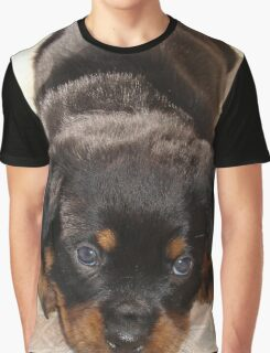 Cute Rottweiler Puppy With Head On Paws Graphic T-Shirt