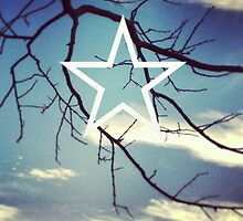 Star Sky ~  by Emma  Wertheim