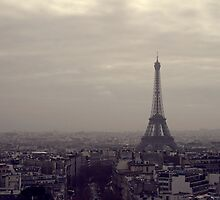 Eiffel Tower, Paris  by Newhaven