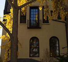 Washington, DC Facades - Dupont Circle Neighborhood in Yellow by Georgia Mizuleva