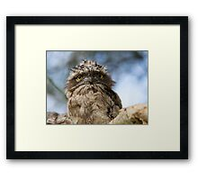 Mediating On Supper Framed Print
