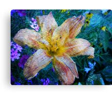 Distressed Lily Canvas Print