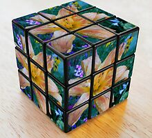 Lily Rubik's Cube by CapeCodGiftShop