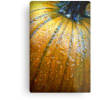 Pumpkin Pumpkin Big and Round Metal Print