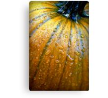 Pumpkin Pumpkin Big and Round Canvas Print