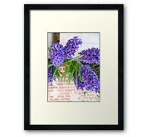 flower cards Framed Print