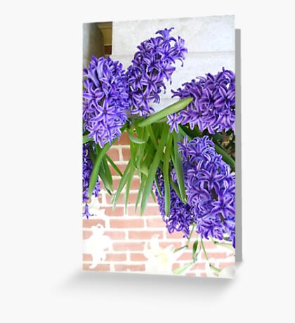 flower cards Greeting Card