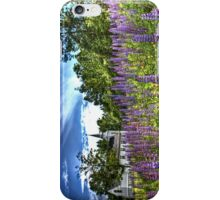 Lupin iPhone and iPod Case iPhone Case/Skin