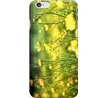 Buttercup iPhone and iPod Case iPhone Case/Skin