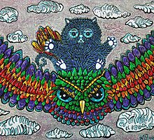 Rainbow Owl Ride by Laura Barbosa
