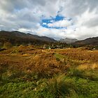 View West from Elterwater Common towards Elterwater and Langdale Pikes by Peter Talbot