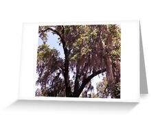 Moss Tree Artistic Photograph by Shannon Sears Greeting Card