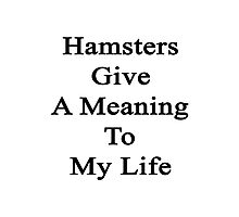Hamsters Give A Meaning To My Life  Photographic Print