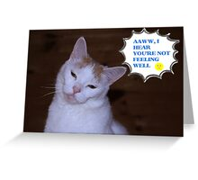 Get Well Wishes From A Cat Greeting Card