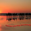 Christmas greetings from Australia, Broome W.A by Pauline Tims