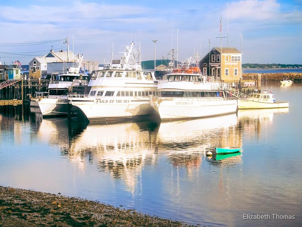 Captain John Boats, Plymouth Harbor, Massachusetts by Elizabeth Thomas