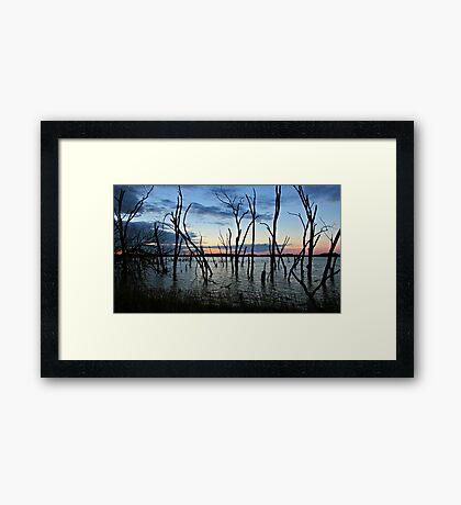 Twisted Twilight Framed Print