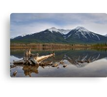 Domain of the goose  Canvas Print