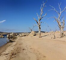 """Our summer beach"" at Lake Eucumbene by eucumbene"