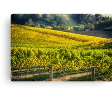 Grape Expectations Canvas Print
