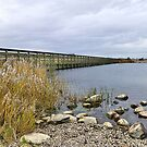 Fleetwood Nature Reserve. by Lilian Marshall